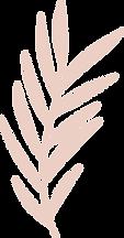leaf_p.png