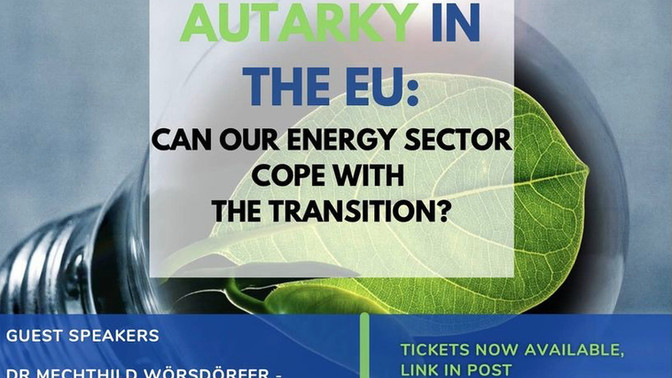 Energy Autarky in the EU: Can our Energy Sector cope with the Transition?