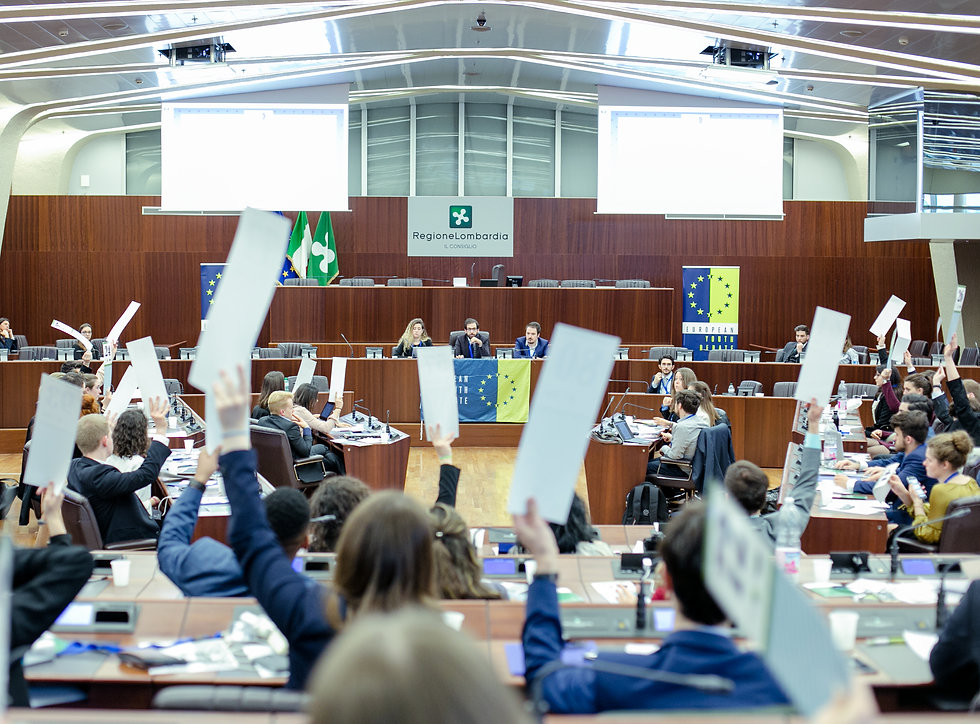 applicants voting at the european youth debate