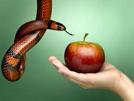 Pecado mortal y venial: la eterna duda