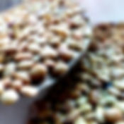 Organically grown, pesticide-free Horse Gram from the drylands of Karnataka