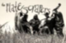 PlateScrapers5.jpg