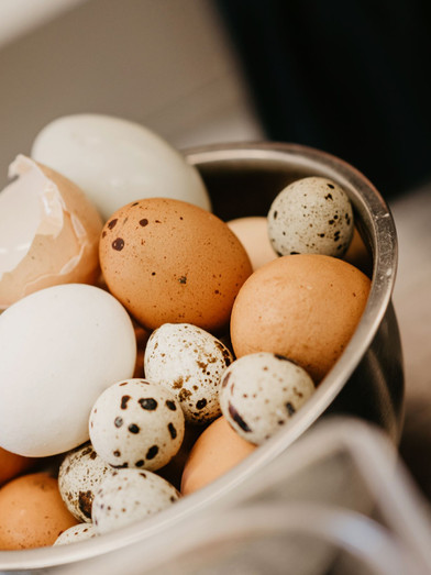 Eier vom eigenen Hof