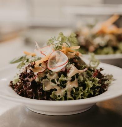 Vorspeisen Salat