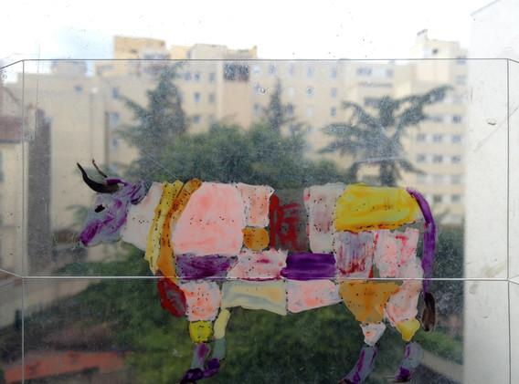 Vaca Acetato2.jpg