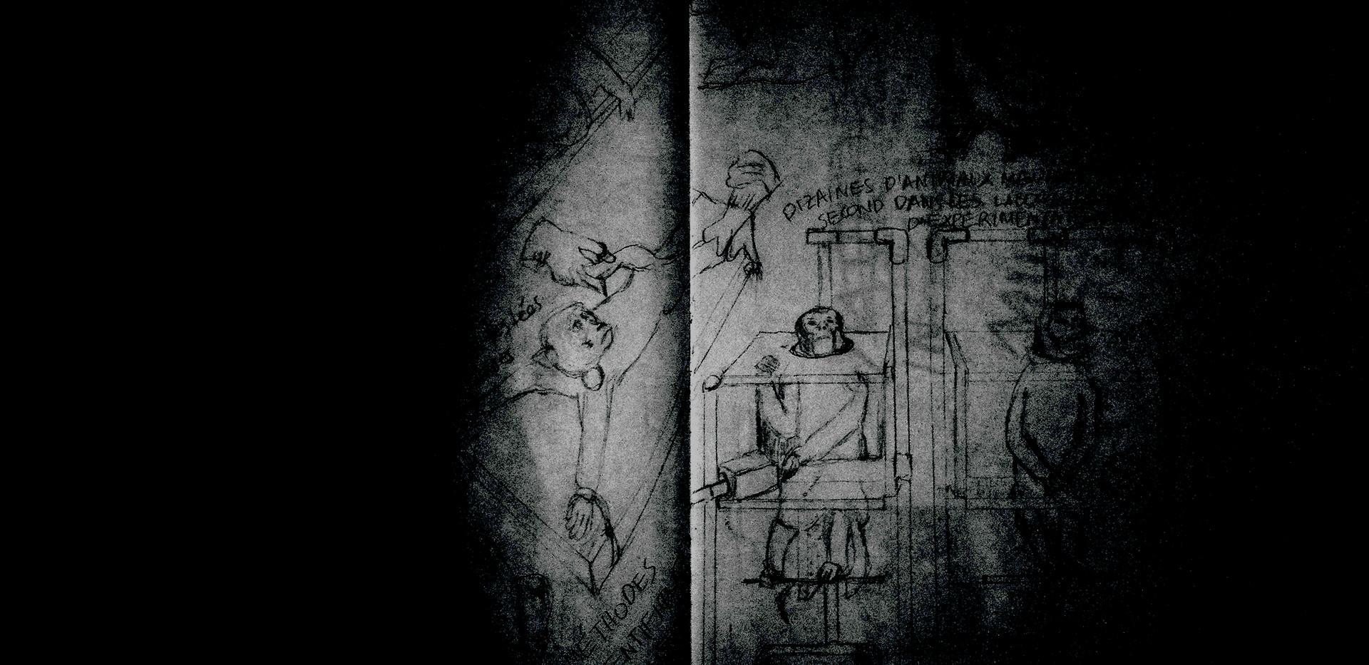 Monkeys Sketch1a.jpg