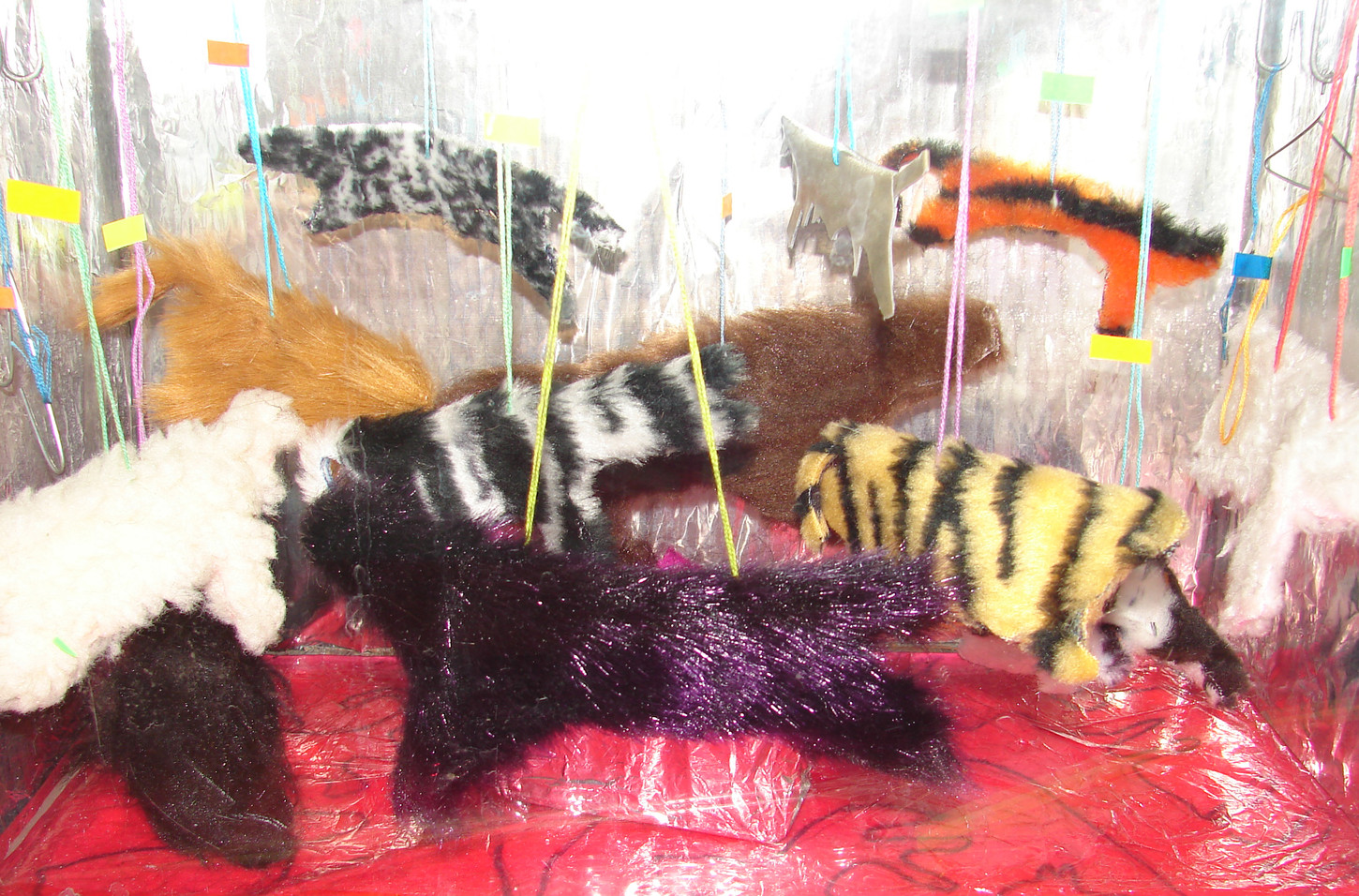 Aquarium - Shop Window3.jpg
