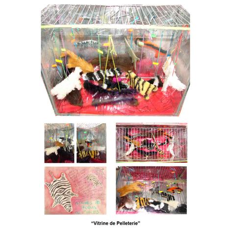 Collage Fur Shop.png
