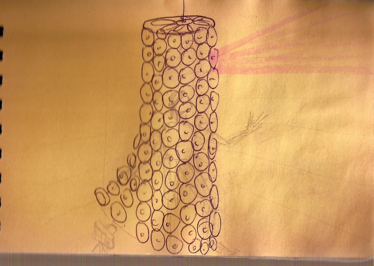 Jellyfish Sketch.jpg