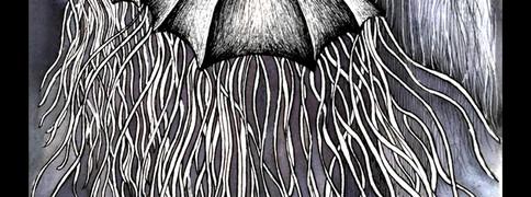 Medusas Sketch