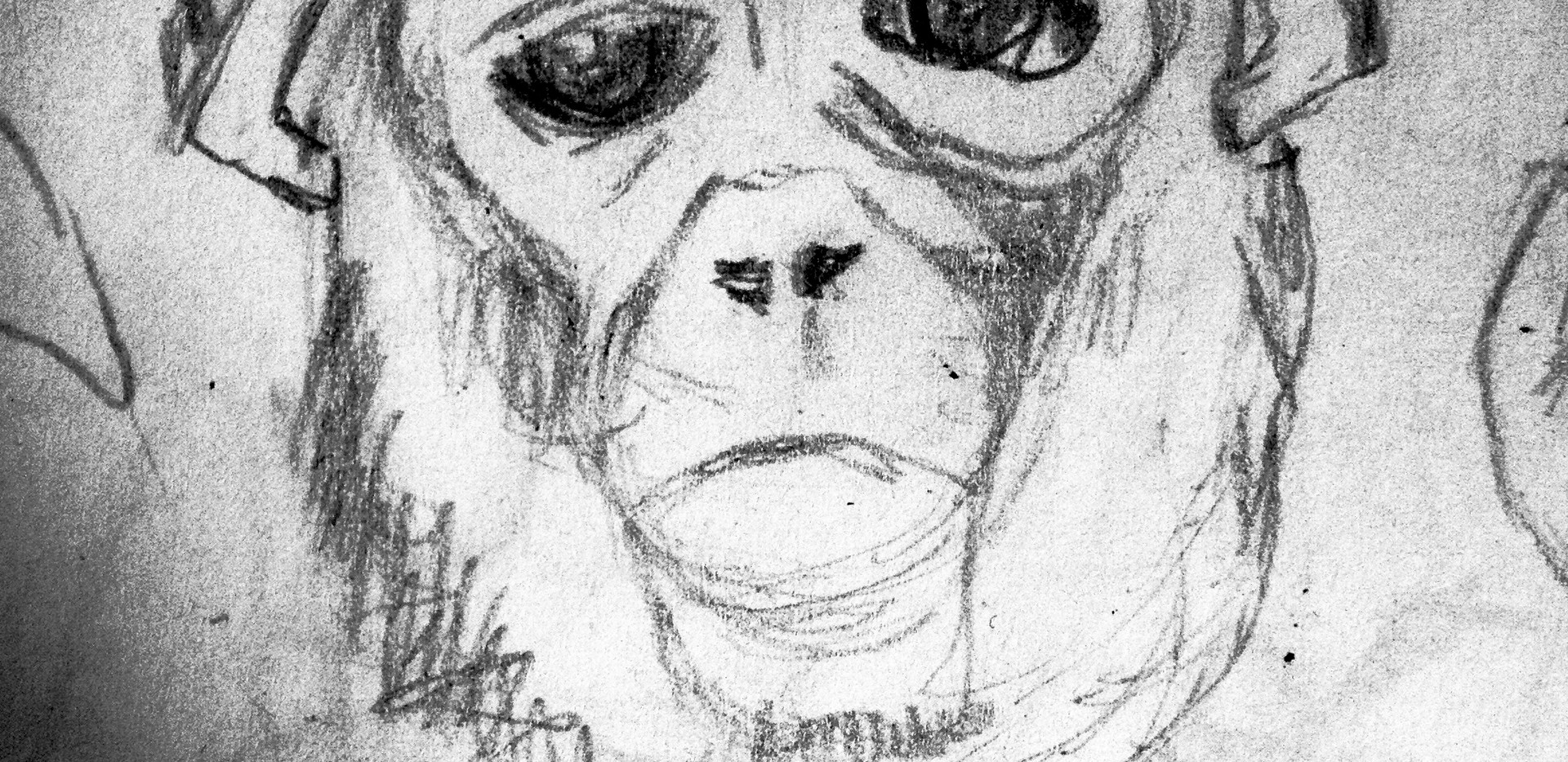 Monkeys Sketch9.jpg