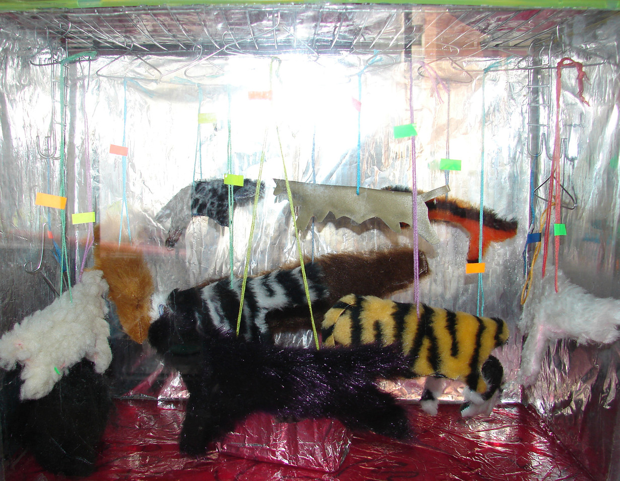 Aquarium - Shop Window2.jpg