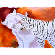 _Ours & Tigre Caresse.jpg