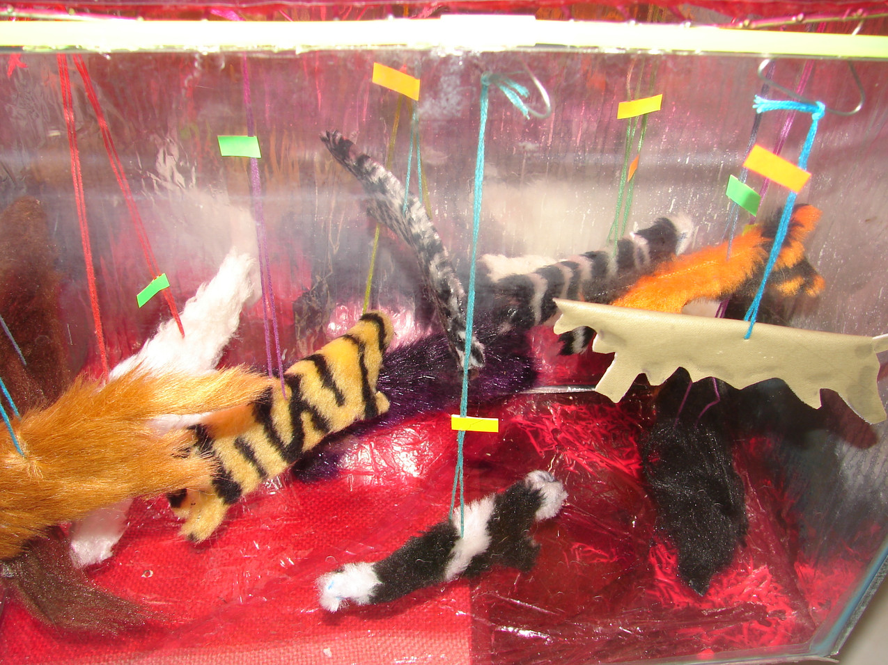 Aquarium - Shop Window7.jpg