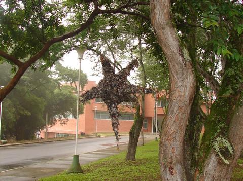 Piñata_Bosque_1.jpg
