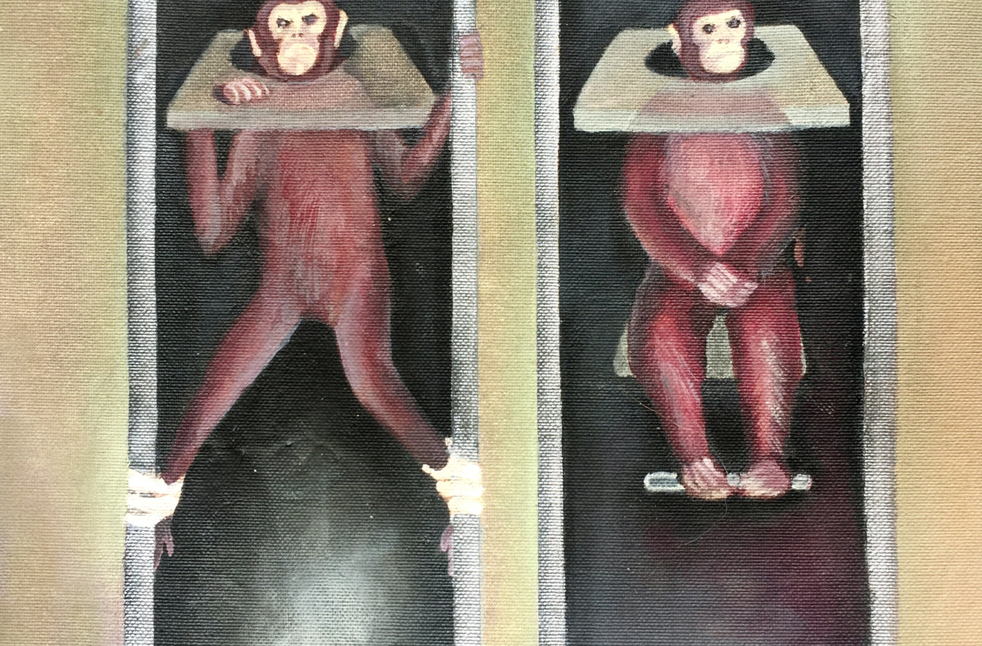 Monkeys in Lab21.jpg