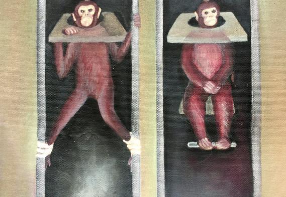 Monkeys in Lab21.jpg