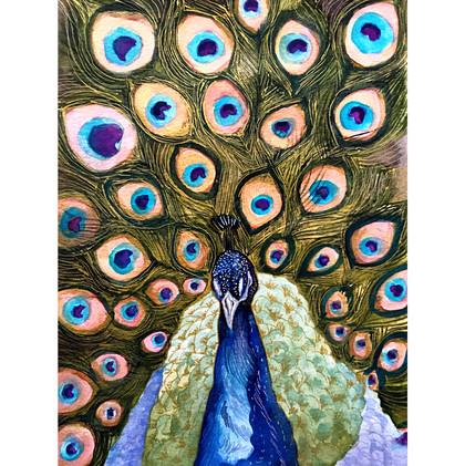 _Peacock1.jpg