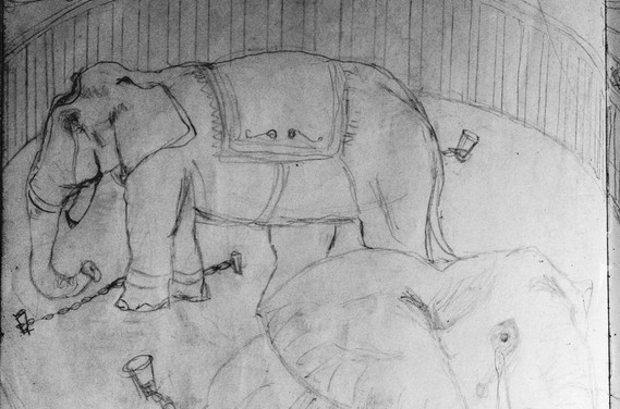 Sketch Protest Circus1.jpg