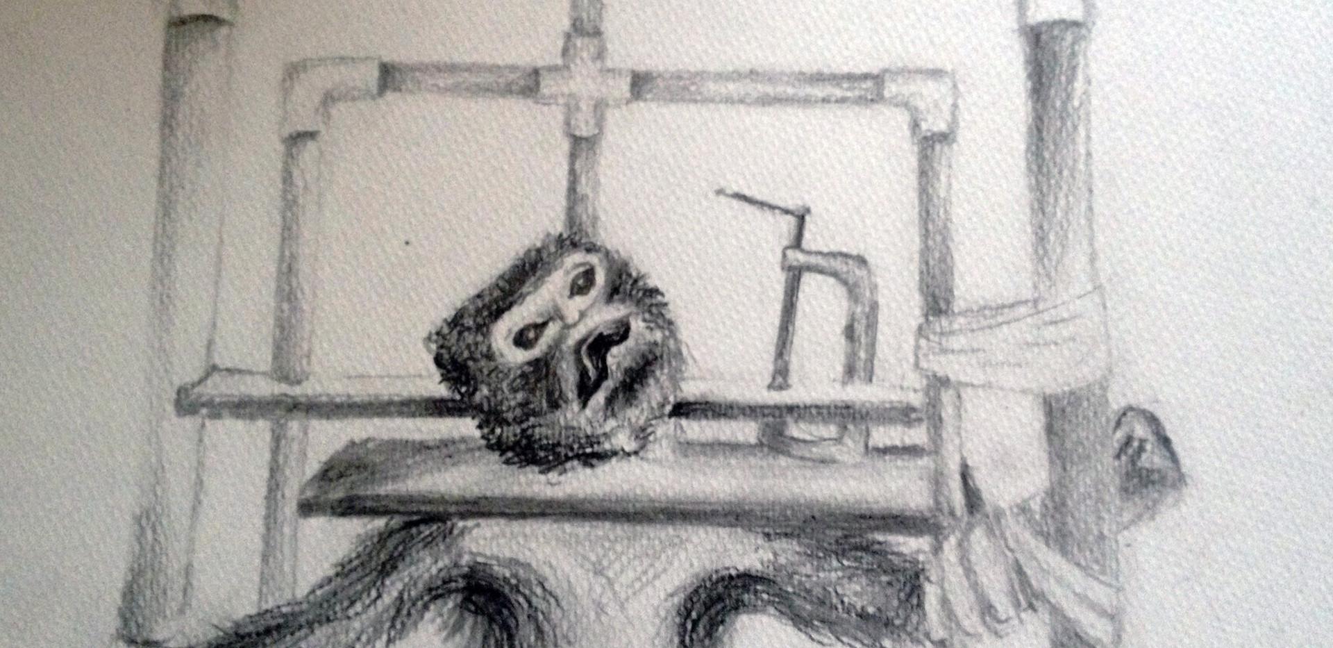 Monkey Sketch 1.jpg