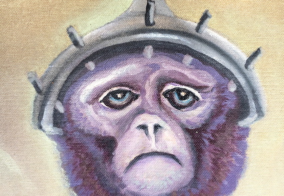 Monkeys in Lab19.jpg