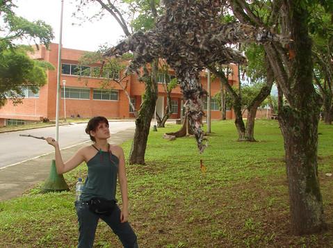 YO_Piñata1.jpg