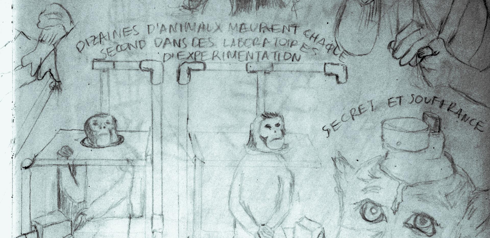 Monkeys Sketch3a.jpg