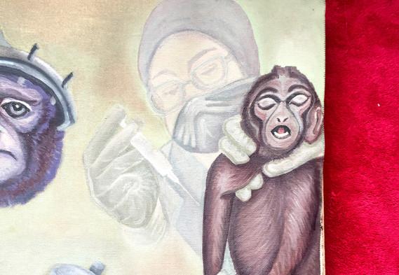 Monkeys in Lab4.jpg