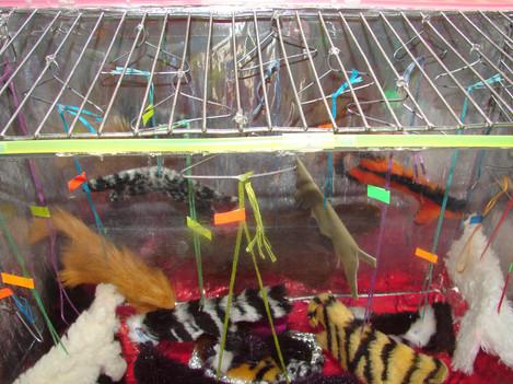 Aquarium Top7.jpg