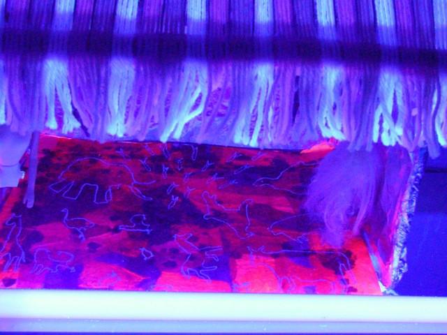Carnicería_-_Ultravioleta12.jpeg