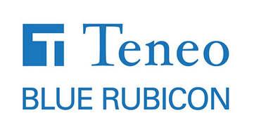 Teneo Blue Rubicon logo.jpg