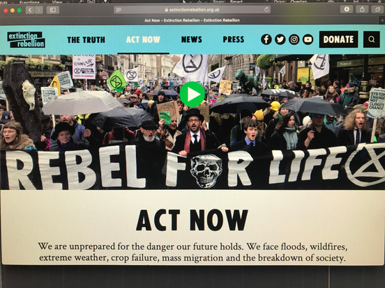 Extinction rebellion rebel for life