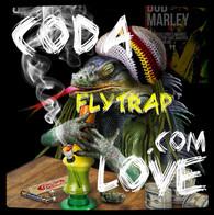Flytrap Coda Love