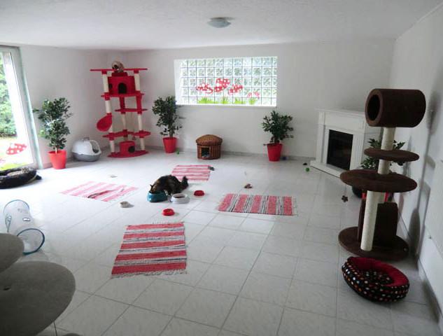 Kamin-Zimmer