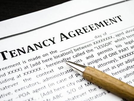 From March 2019, Tenants will be able to sue landlords who refuse to keep up with repairs!