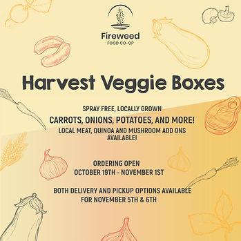 harvest veggie boxes.jpg