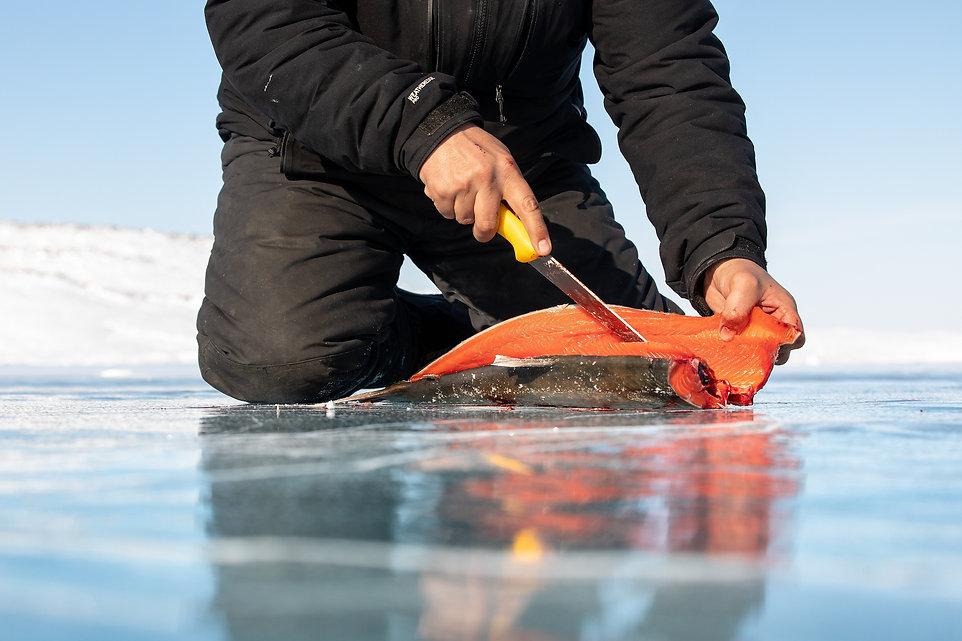 Fish 7 resized.jpg