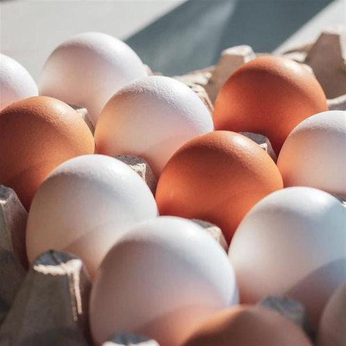 Nature's Farm Free-run Omega3 Eggs (dozen)