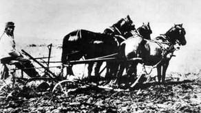 Seeding Resiliency: Dakota Farming in Canada