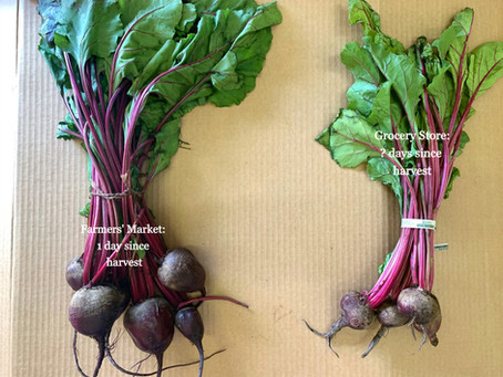Nutrition: The Invisible Superpower of Local Food