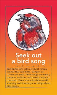 bird card.tif