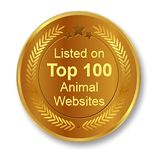 top animial websites.png