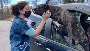 BRHS Begins 2021 Pet Food Giveaways
