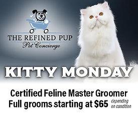kitty-monday-web-ad.jpg