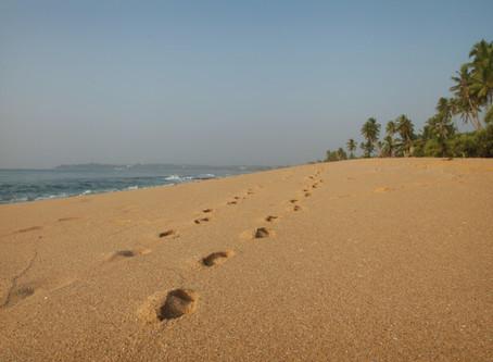 Nossos Favoritos: Viagem de Praia