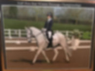 Lily Crisp Dressage and Mr Mcgonagall