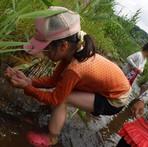 7月 川遊び