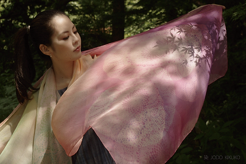 紅葉影on 桜lace