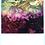 Thumbnail: 吉祥寺美術館展-15