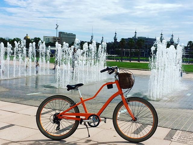 Bike Tour at Curtis Hixon Park